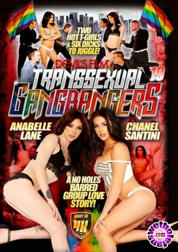 Transsexual Gang Bangers 19 (2017/WEBRip/SD/1.58 GB)