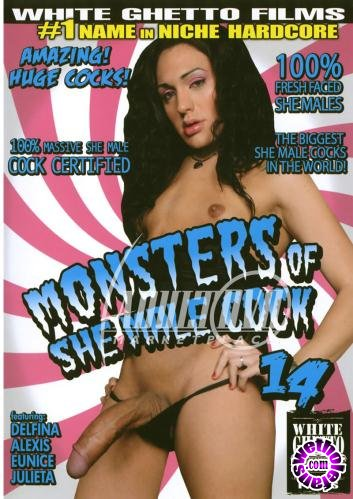 Monsters Of She Male Cock 14 (2009/WEBRip/SD/914 MB)
