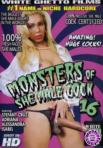 Monsters Of She Male Cock 16 (2010/WEBRip/SD/1.5GB)
