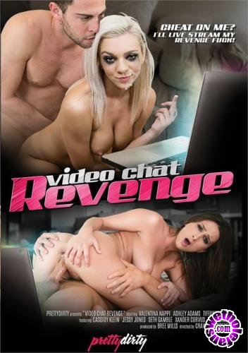 Video Chat Revenge (2017/WEBRip/SD/2.00 GB)