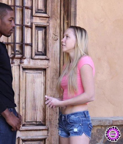ZeroTolerance/Ztod - Hollie Mack - Hollie Mack Gets Fucked Interracially (FullHD/1080p/1.42 GB)