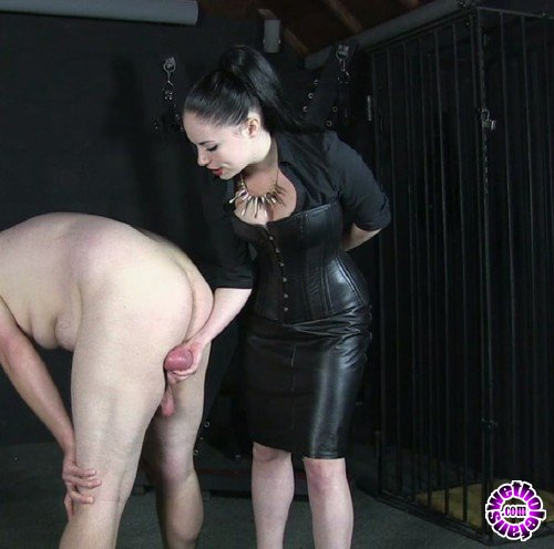 BallBustingChicks/Clips4Sale - Mistress Sophia Black - Look At These Bollocks (FullHD/1080p/239 MB)