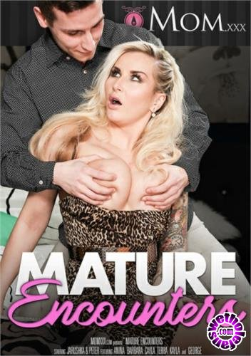 Mature Encounters (2017/WEBRip/SD/2.34 GB)