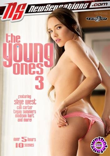 The Young Ones 3 (2017/DVDRip/2.55 GB)