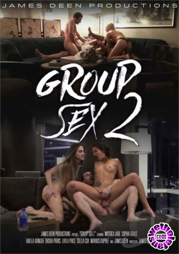 Group Sex 2 (2017/DVDRip/1.39 GB)