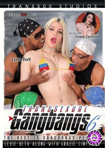 Transsexual Gang Bang 6 (2017/WEBRip/SD/1.15 ГБ)