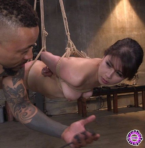 BrutalSessions/Kink - Penelope Reed - Reed Takes A Brutal Pounding From Eddie Jayes Huge Cock (HD/1.7GB)