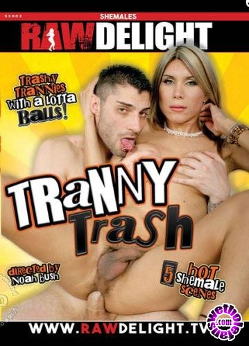 Tranny Trash (2016/WEBRip/SD/2.33 GB)