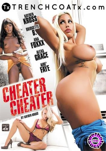 Cheater Cheater (2018/WEBRip/SD/2.77 GB)