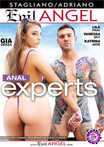 Anal Experts (2019/SD/480p/2.8 GB)